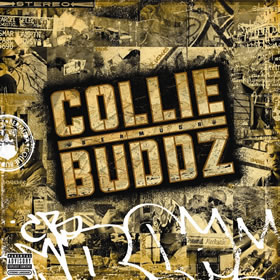 Preview Collie Buddz's debut self-titled release TODAY!