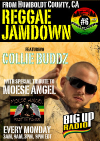 Reggae Jamdown 6 features the dancehall sensation Collie Buddz